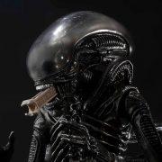 alienbigchap_02
